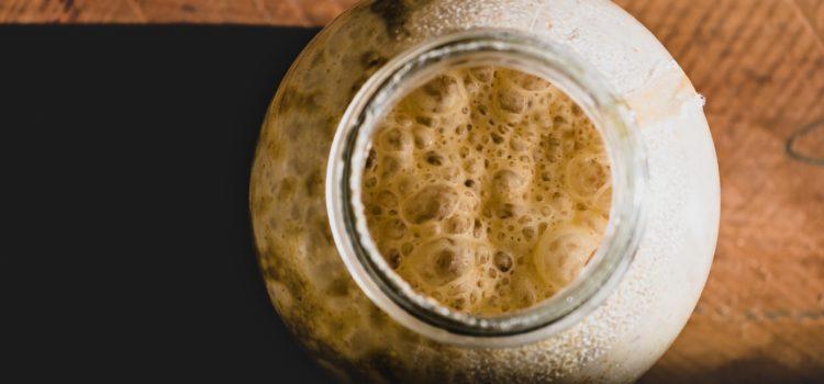 Como fazer fermento natural ou levain para pães
